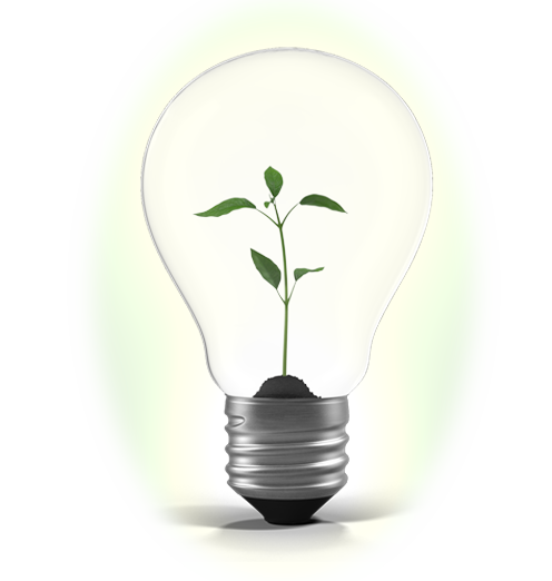 It Starts With Your Ideas - Ocala Web Design, Bright Green Path