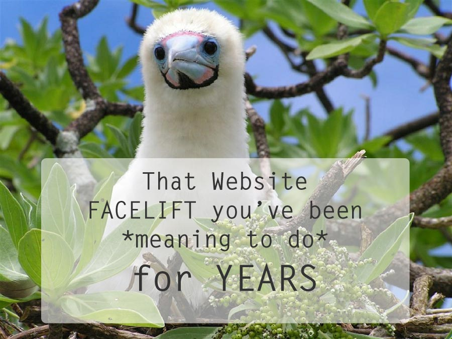 That Website Facelift You've Been Meaning to Do for Years
