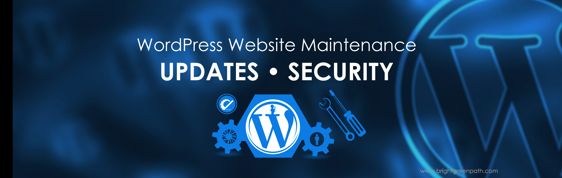 Florida WordPress Website Maintenance Services