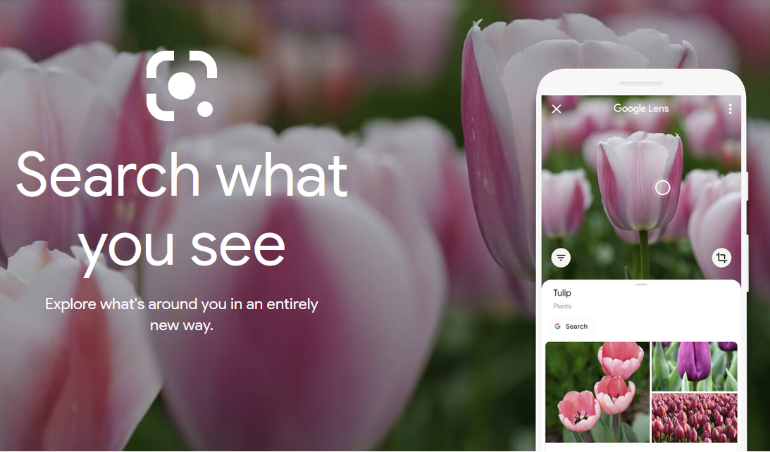 Google has made significant developments using visual search with Google Lens.