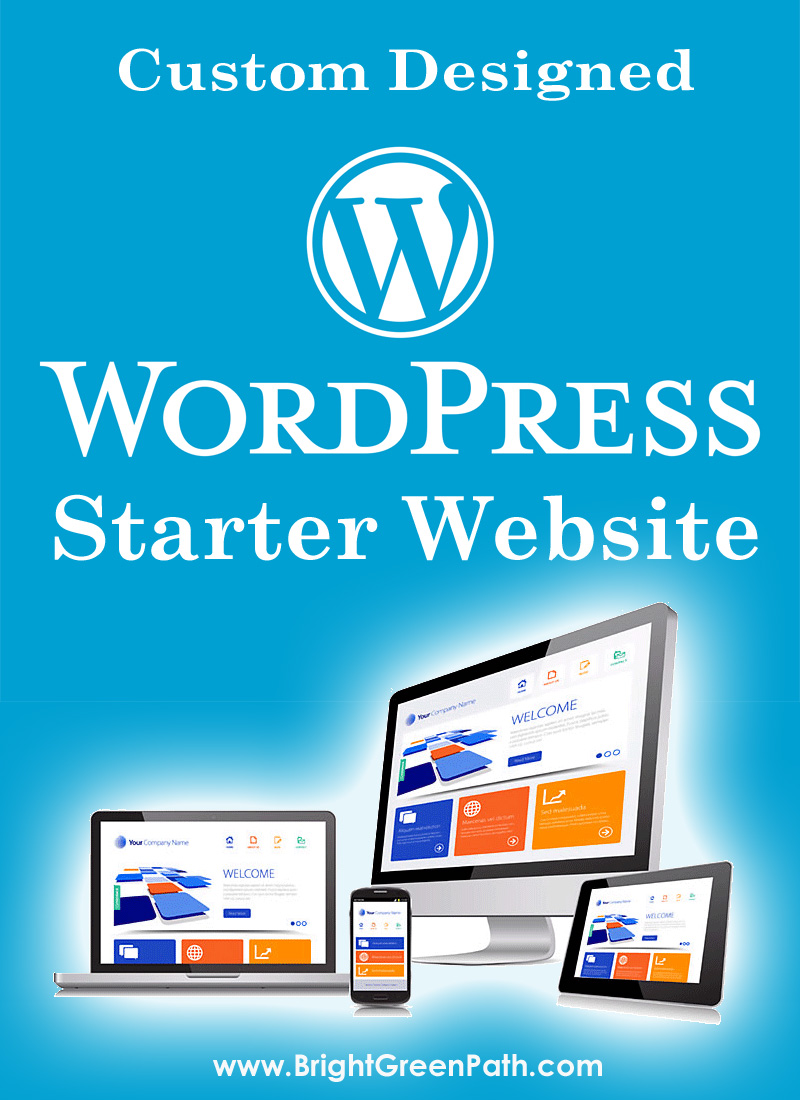 Florida Custom WordPress Web Design Starter Package